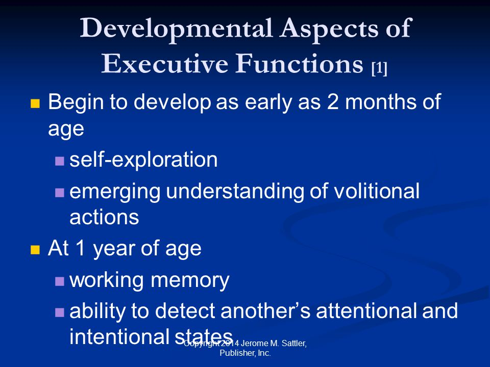 Developmental Aspects of Executive Functions [1]